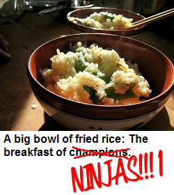 fried_rice_champions_ninjas.png