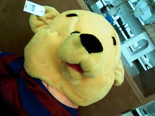 Old Pooh doll
